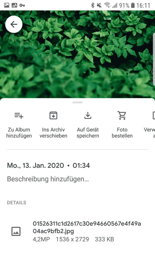 Google Fotos auf Gerät speichern