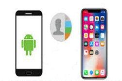 Kontakte vom iPhone aufs Android-Handy kopieren