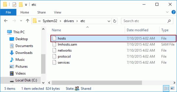 Computer hosts