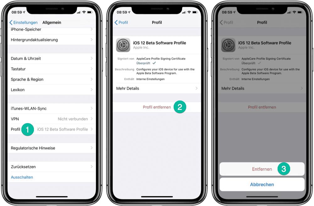 iOS Beta Software Profile löschen