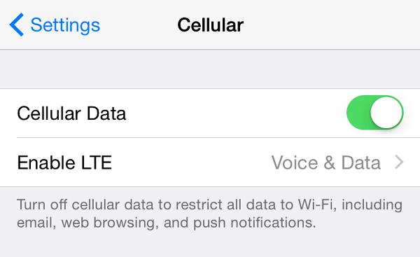 iPod Zellular-Daten