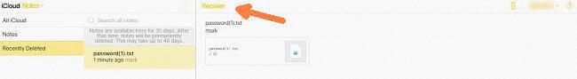 Notizen auf iCloud-Web wiederherstellen