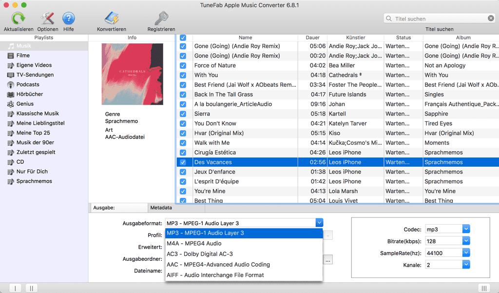 MP3 als Ausgabeformat auswählen