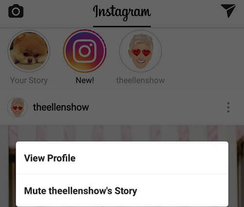 Instagram-Story stummschalten