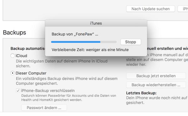 iTunes Backup starten