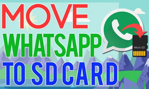 Whatsapp Dateien Auf Sd Karte Speichern.So Können Sie Whatsapp Bilder Videos Auf Sd Karte Verschieben
