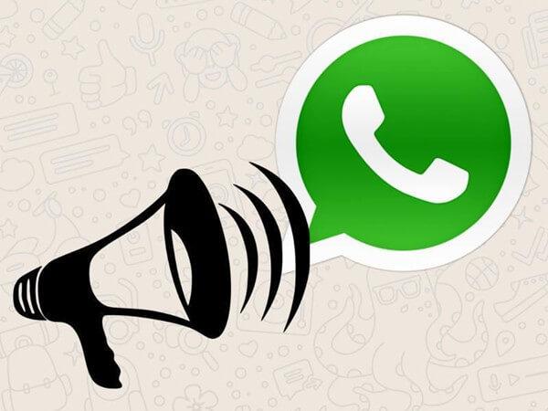 WhatsApp-Probezeit