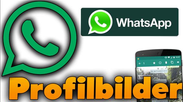 WhatsApp-Profilbilder speichern