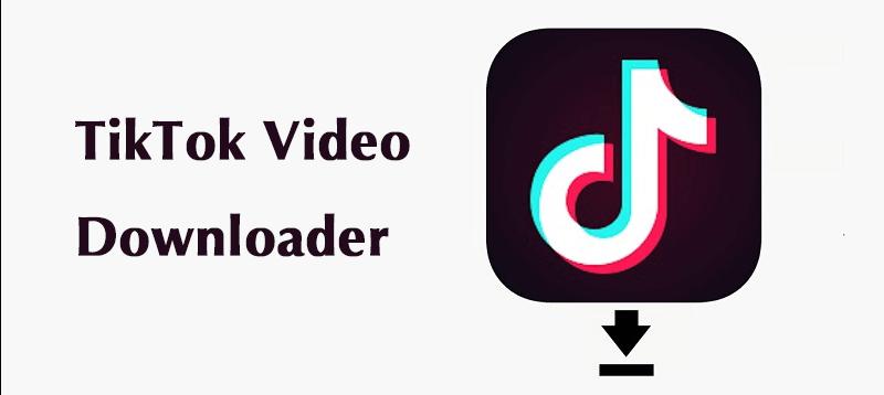 TikTok Videos downloaden