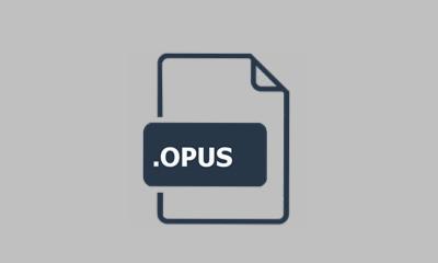 Opus-Datei